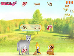 Feeding Animals game