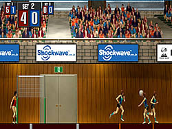 Gioca gratuitamente a Volleyball Game