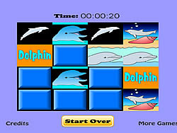 gra Dolphin Match Game