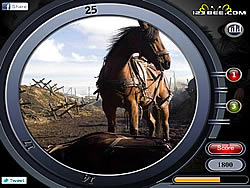War Horse - Find the Numbers