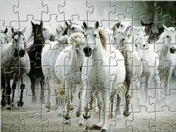 Game White Horse Jigsaw