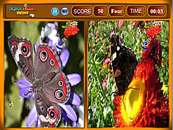 Juego Butterfly Similarities