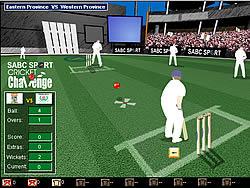 שחקו במשחק בחינם Cricket Challenge