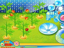 Game Sue Tomato Factory