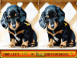 Jouer au jeu gratuit Differences in Puppy Land