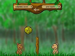 Teddy Ball game