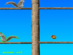 Gioca gratuitamente a Acorn Toss
