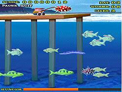 Shark Bait game