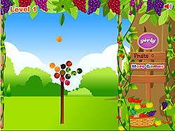 Fruit Shoot Garden game