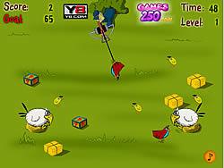 Birds Catcher game