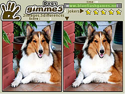 Gimme 5 Dogs game