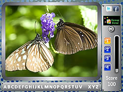 Permainan Butterfly - Find the Alphabets