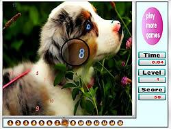 שחקו במשחק בחינם Faboulous Animals Hidden Numbers