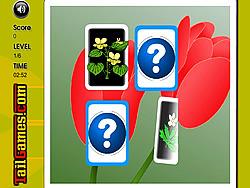 Flowers Memory Challenge game