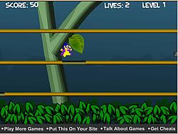 gra Jungle Escape