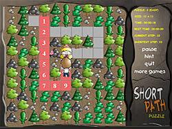 Short Path Puzzle game