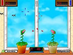 Sundews Fighting game