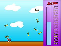 Sultan game